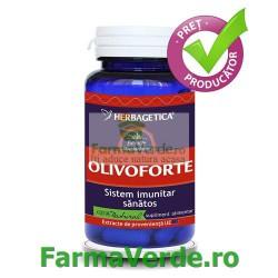 Olivo Forte Frunze de Maslin 60 capsule Herbagetica