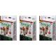 Kinoki plasturi detoxifiere pentru talpi 10buc set NaturaliaDiet