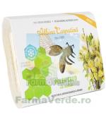 Polen crud de salcie 250 gr Albina Carpatina Apicola