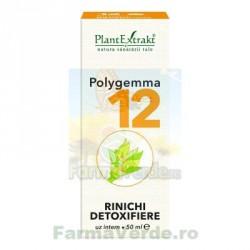 Polygemma Nr.12 Rinichi Detoxifiere 50 ml Plantextrakt