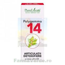 Polygemma Nr.14 Articulatii Detoxifiere 50 ml Plantextrakt