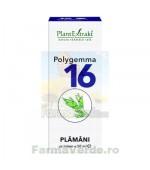 Polygemma Nr.16 Plamani 50 ml Plantextrakt