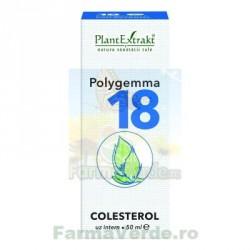 Polygemma nr 18 Colesterol 50 ml Plantextrakt