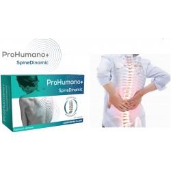 SpineDinamic ProHumano Regenereaza nervii periferici si combate durerea neuropata PharmaLinea