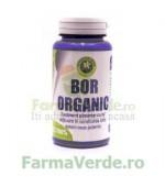 Bor Organic 60 Capsule Hypericum Plant