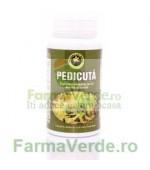Pedicuta 60 Capsule Hypericum Plant