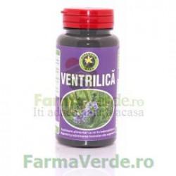 Ventrilica 60 Capsule Hypericum Plant