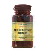 REISHI SHIITAKE MAITAKE Regele Ciupercilor 60 capsule CosmoPharm