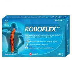 Roboflex Sanatatea Articulatiilor! 10 capsule Good Days Therapy