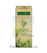 Gemoderivat Extract din mladite de sequoia 50 ml Plantextrakt