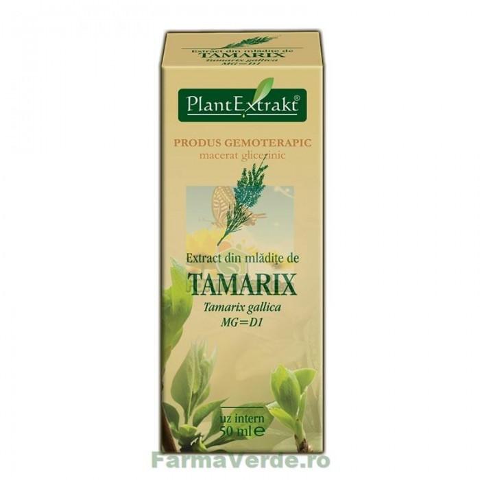 Gemoderivat Extract din mladite de tamarix 50 ml Plantextrakt