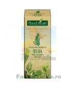 Gemoderivat Extract din mladite de tuia 50 ml Plantextrakt