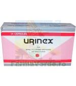 Urinex 24 capsule moi gastrorezistente Pharco Impex