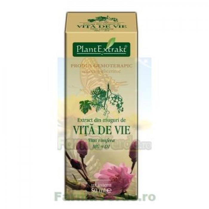 Extract din mladite de vita de vie Salbatica 50ml Plantextrakt