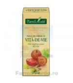 Extract din seminte vita de vie gemoderivat 50 ml (VITIS VINIFERA) PlantExtrakt