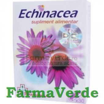 Echinaceea 30 Capsule Quantum Pharm