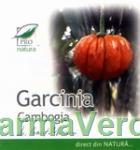 Garcinia Cambogia 200 capsule Medica ProNatura
