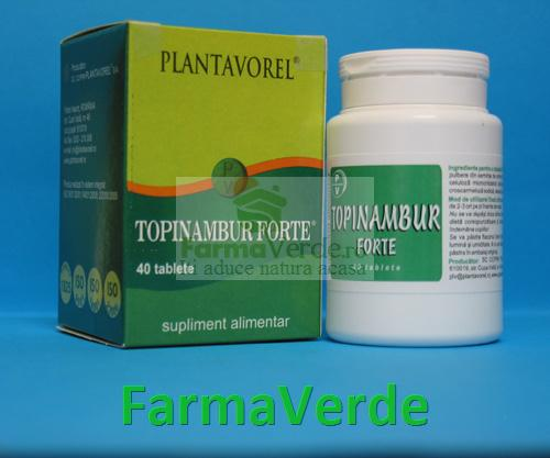 Topinambur Forte 40 tb PlantaVorel